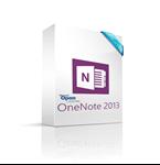 תמונה של OneNote 2013