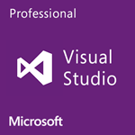 תמונה של Visual Studio Professional 2013